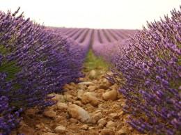 Autem do Provence - zkušenosti a rady na cestu