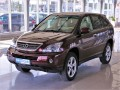 Lexus RX 400 3,3 400h Executive Serv.kniha